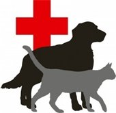 Dog and cat outline with red cross