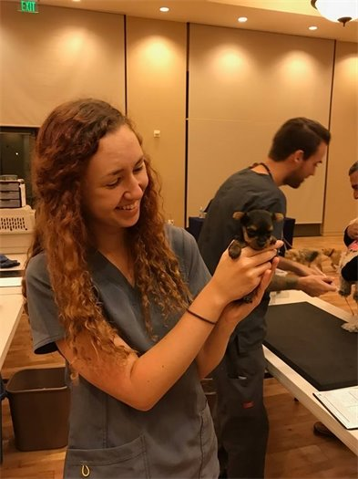 Pet clinician with puppy