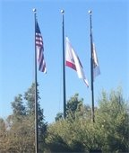 City of RSM Flags